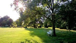 tierfriedhof-besucher