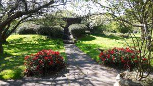 Nördlich von Hamburg rosengarten, tierfriedhof tierkrematorium tierbestattung
